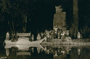 Image of Bohemian Grove 1