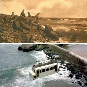 Image of Seal Rocks of San Francisco; tram-canva