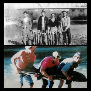 images of Russian River fishing