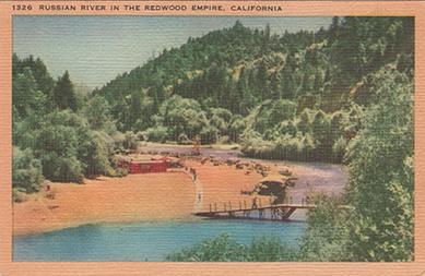 Russian River Redwoods Beach