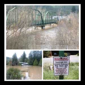 photos of 2006 flood